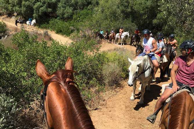 Franschhoek-horse-riding